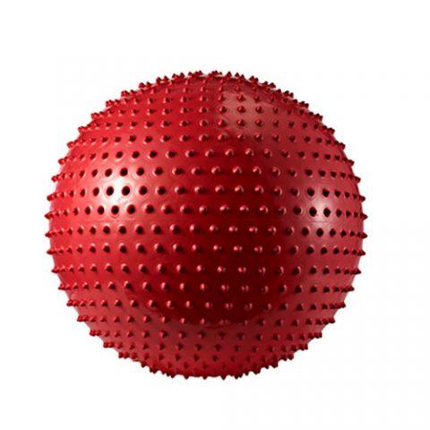 توپ-های-جیم-بال-مخصوص-ماساژ-در-سایت-ورزشی-ارزان-در-رنگ-های-مختلف-